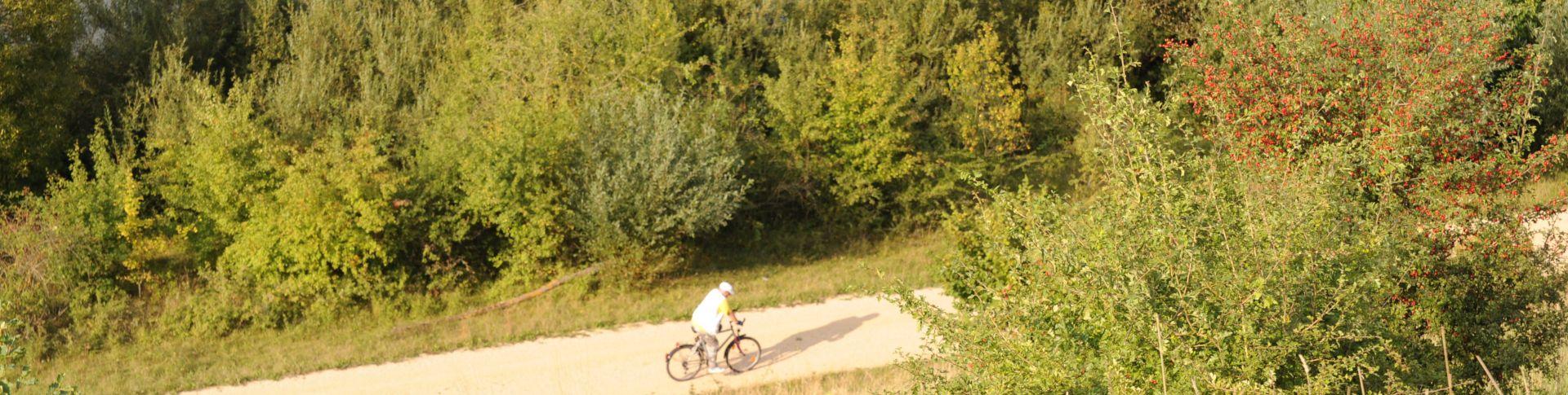 Rad- & Wandertouren